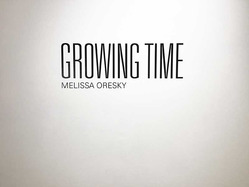 'Growing Time': Melissa Oresky's art embodies ecology at MCAC